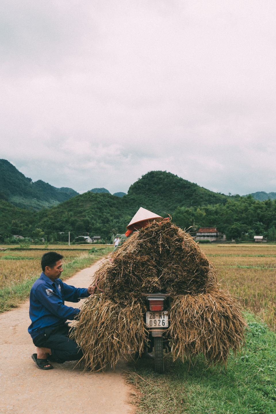 Road of Mau Chai