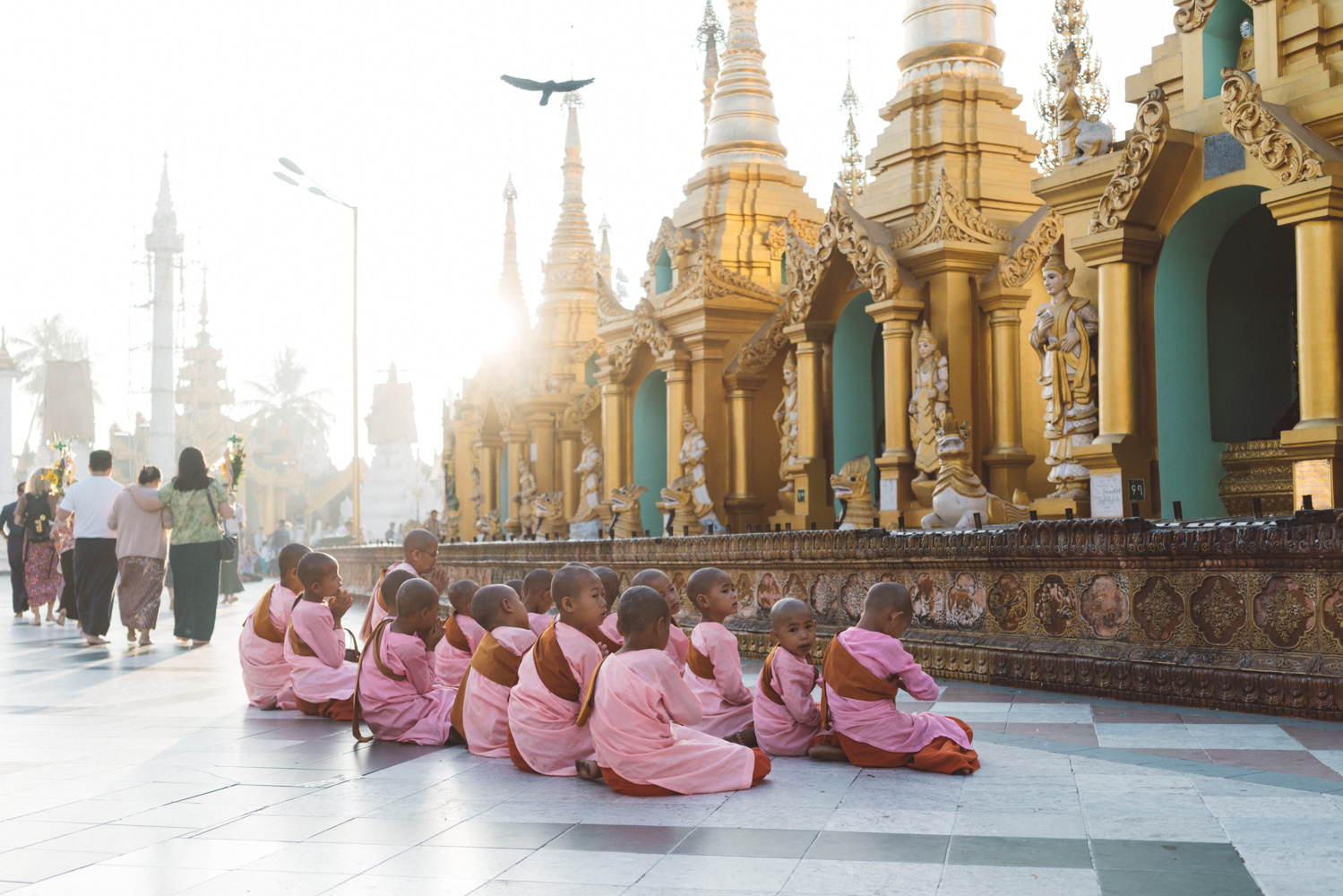 Morning class at Shwedagon