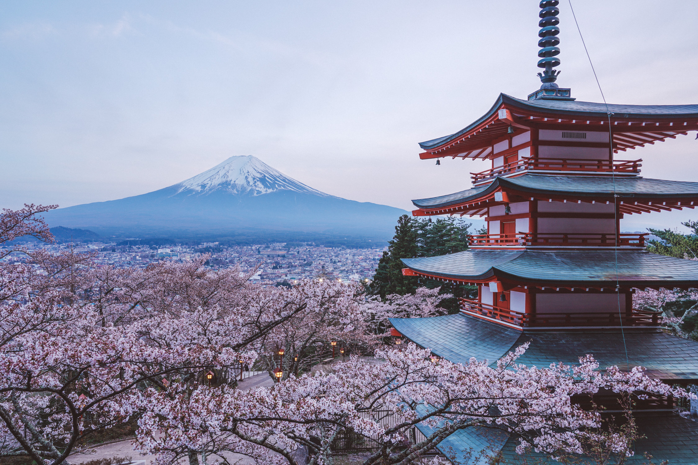 The Chureito Pagoda during cherry blossom with mt-Fuji [David Tan]